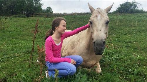 Hestebilde3.jpg