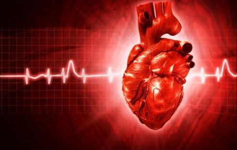 Hva er hjerteklaffenes oppgave