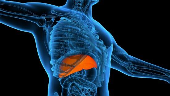 hepatitt c smitte